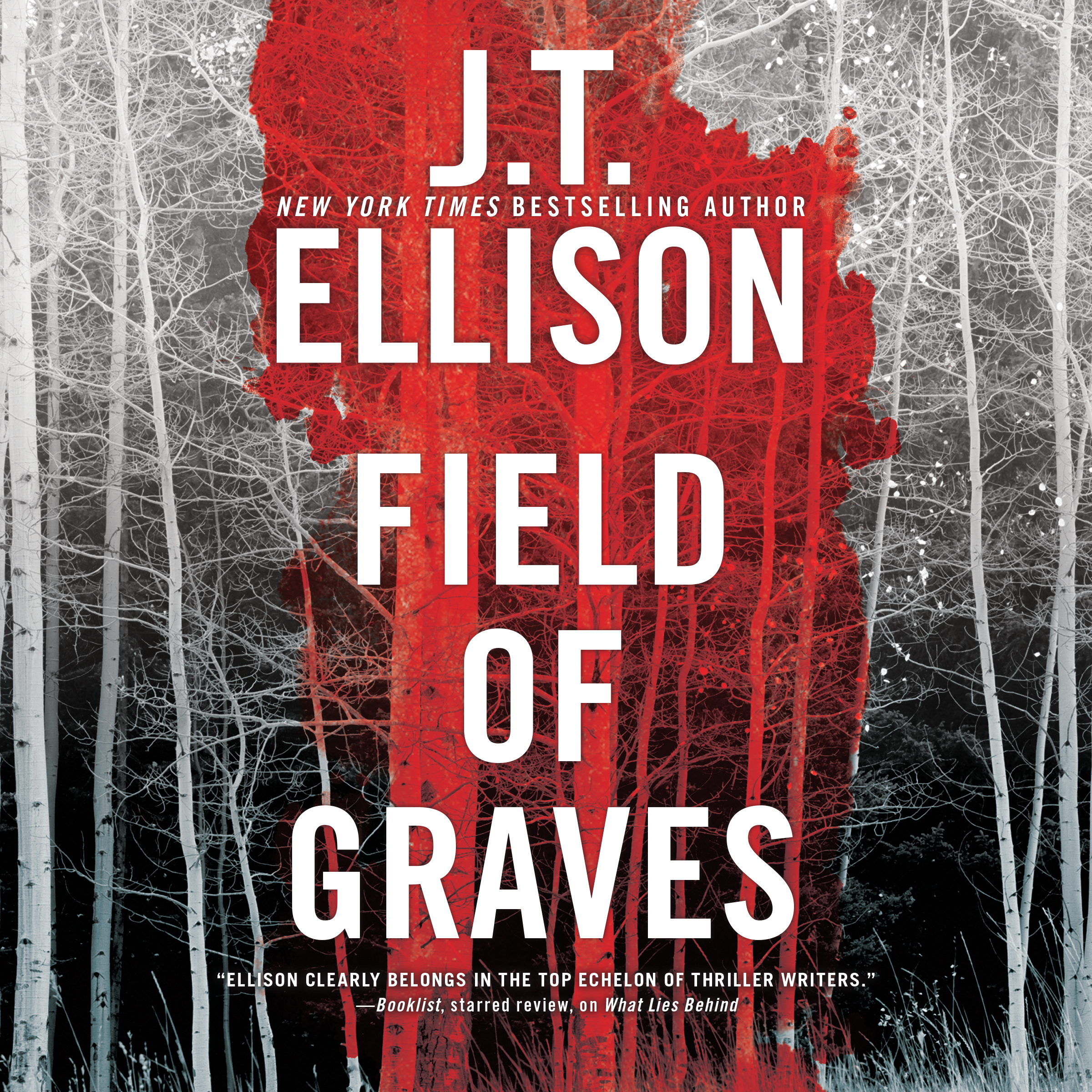 Printable Field of Graves Audiobook Cover Art
