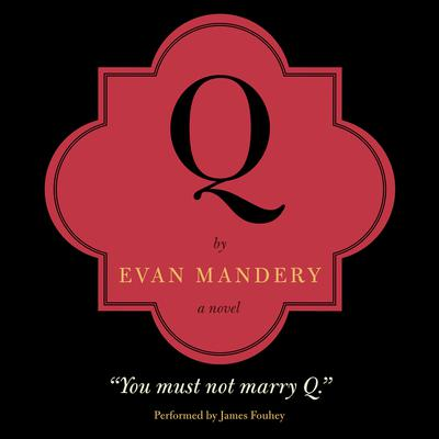 Q: A Novel: A Novel Audiobook, by Evan Mandery