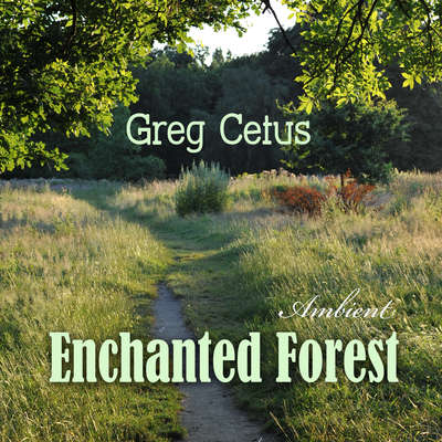 Enchanted Forest: Calming Visualization for Good Sleep Audiobook, by Greg Cetus