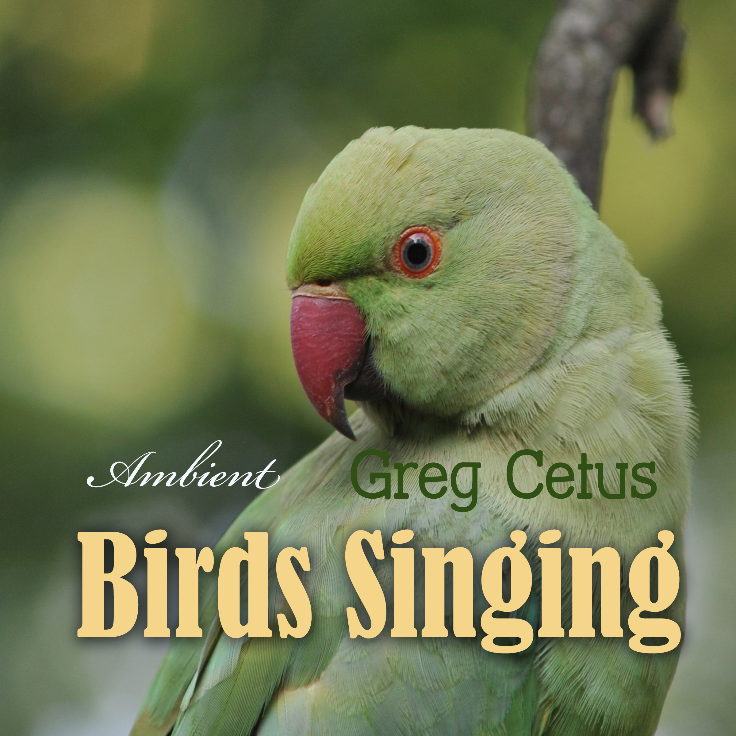 Printable Birds Singing: Ambient Sound for Mindful State Audiobook Cover Art