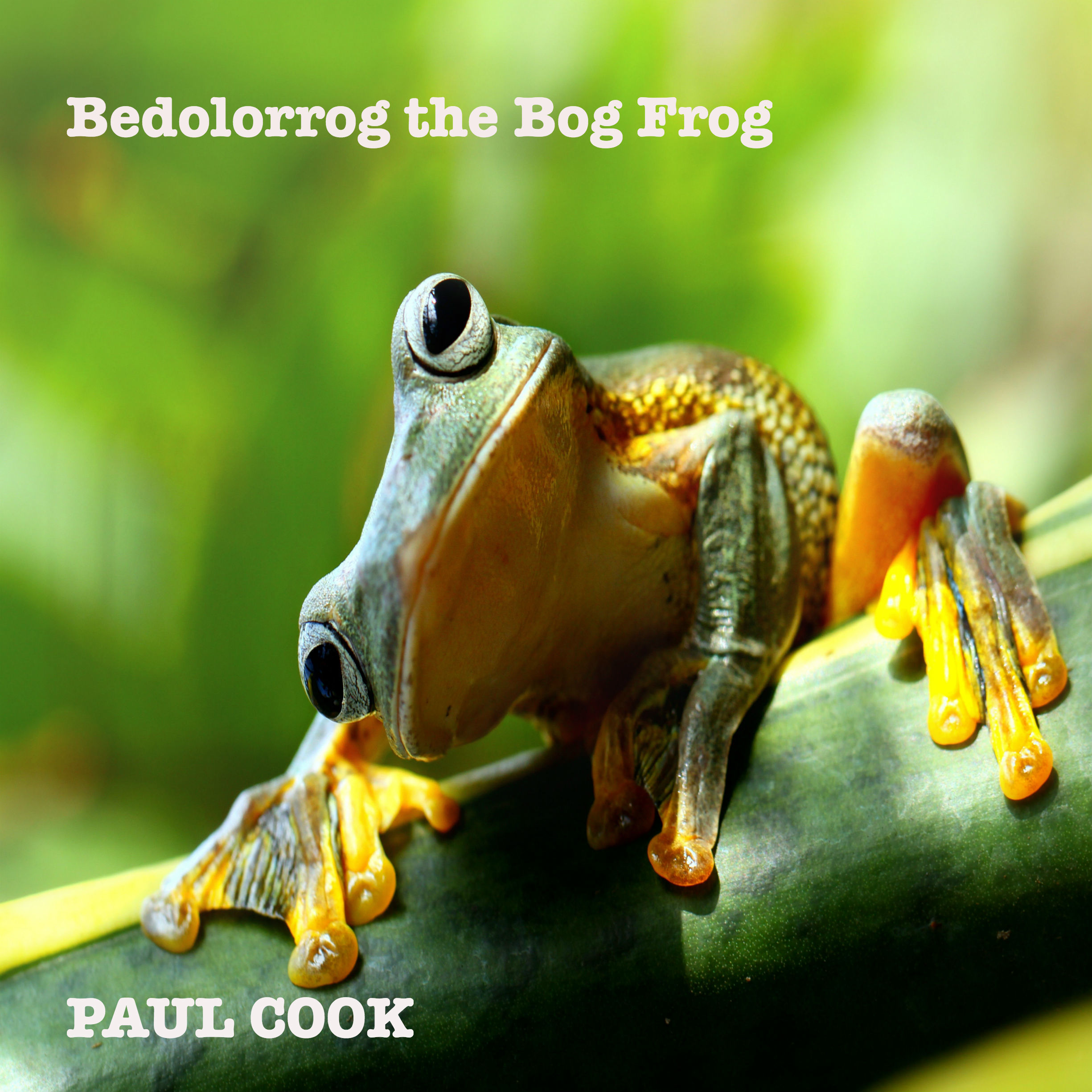 Printable Bedolorrog the Bog Frog: His Complete Life Story Audiobook Cover Art