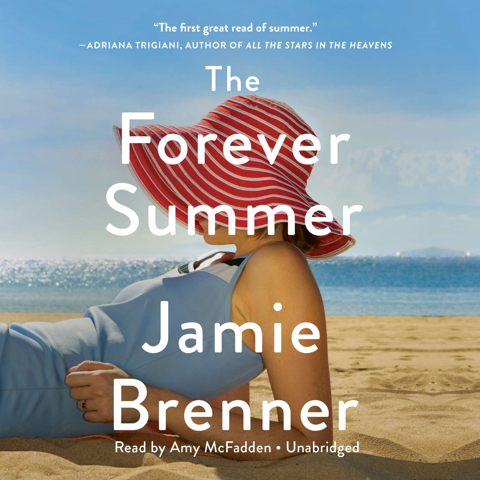 Printable The Forever Summer Audiobook Cover Art