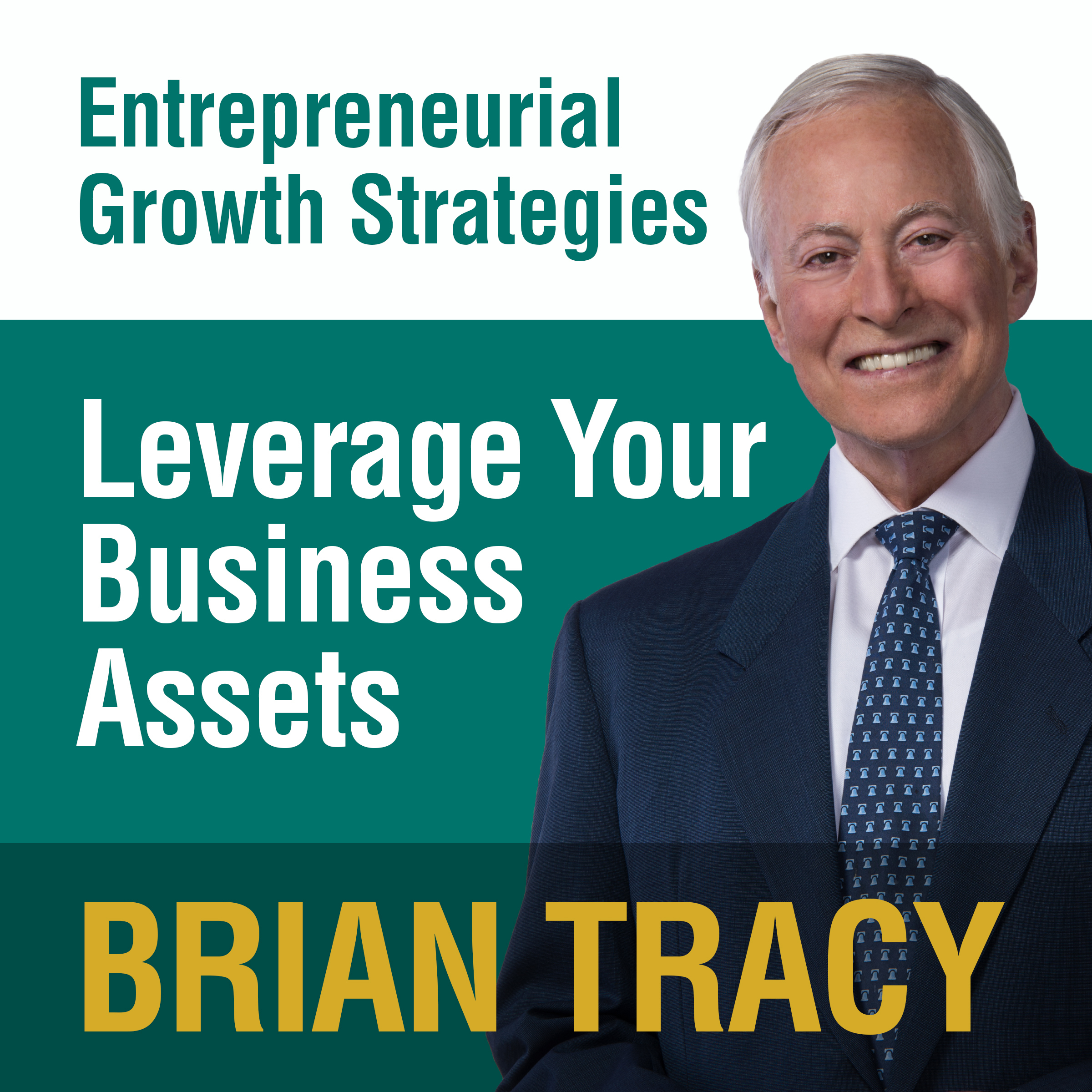 Printable Leverage Your Business Assets: Entrepreneural Growth Strategies Audiobook Cover Art