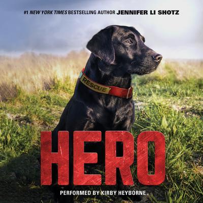 Hero Audiobook, by Jennifer Li Shotz