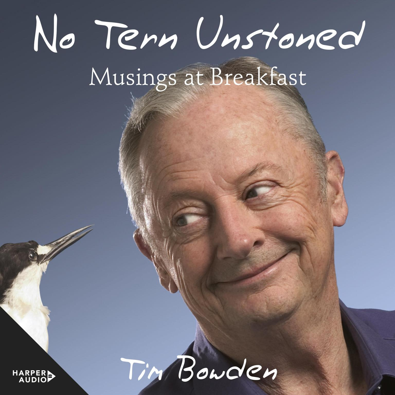 Printable No Tern Unstoned: Musings at Breakfast Audiobook Cover Art