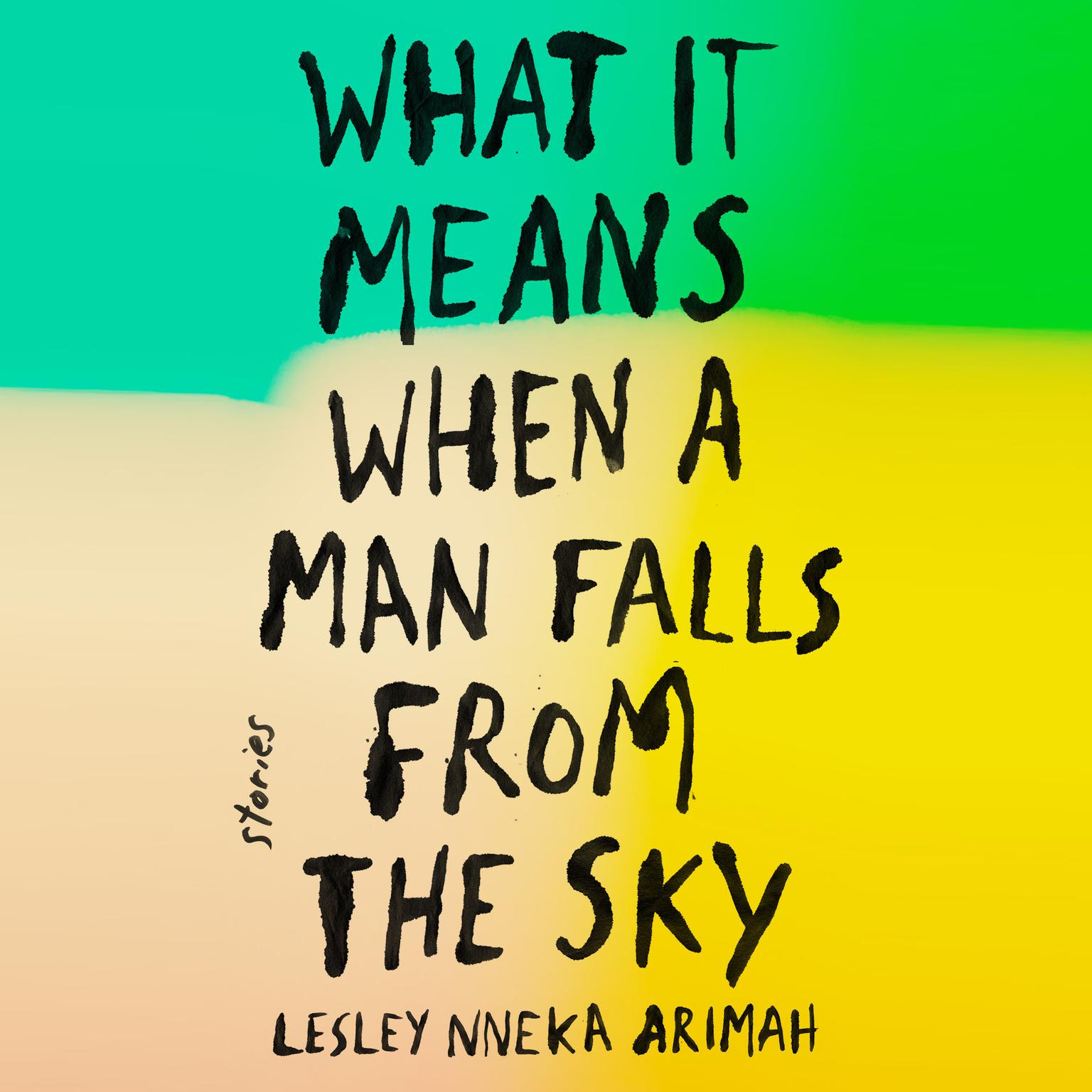 Printable What It Means When a Man Falls from the Sky: Stories Audiobook Cover Art