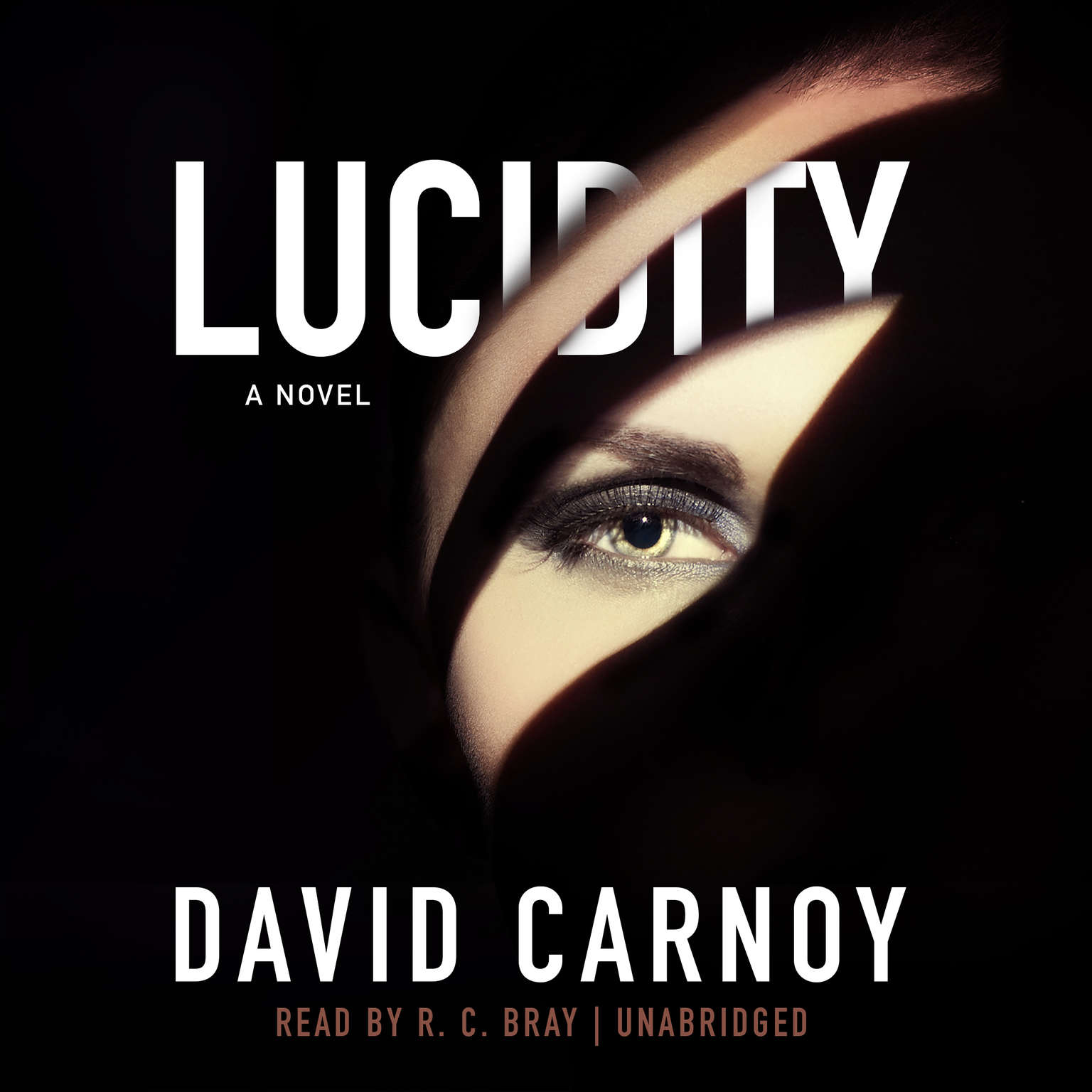 Printable Lucidity: A Thriller Audiobook Cover Art