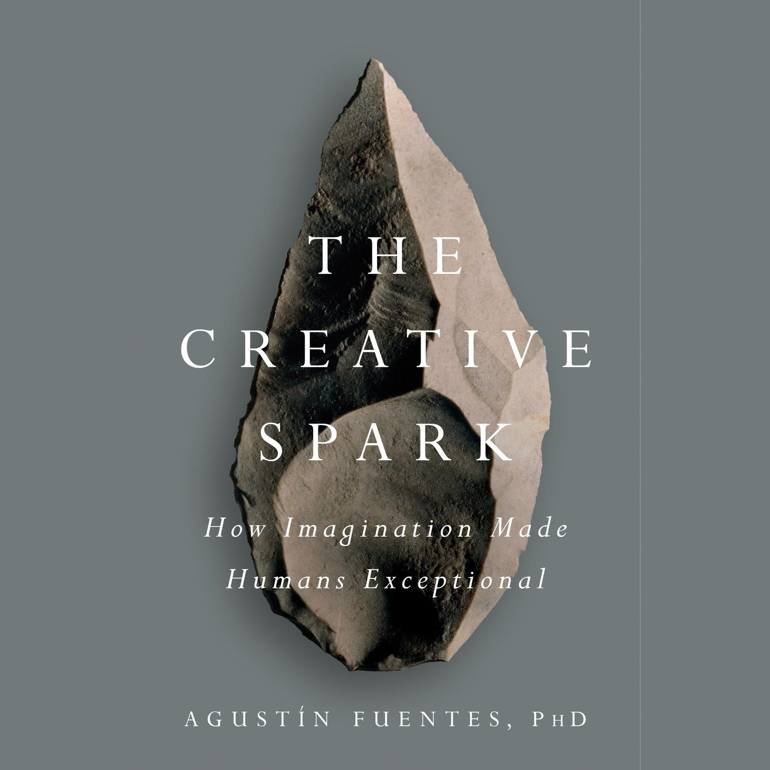 Printable The Creative Spark: How Imagination Made Humans Exceptional Audiobook Cover Art