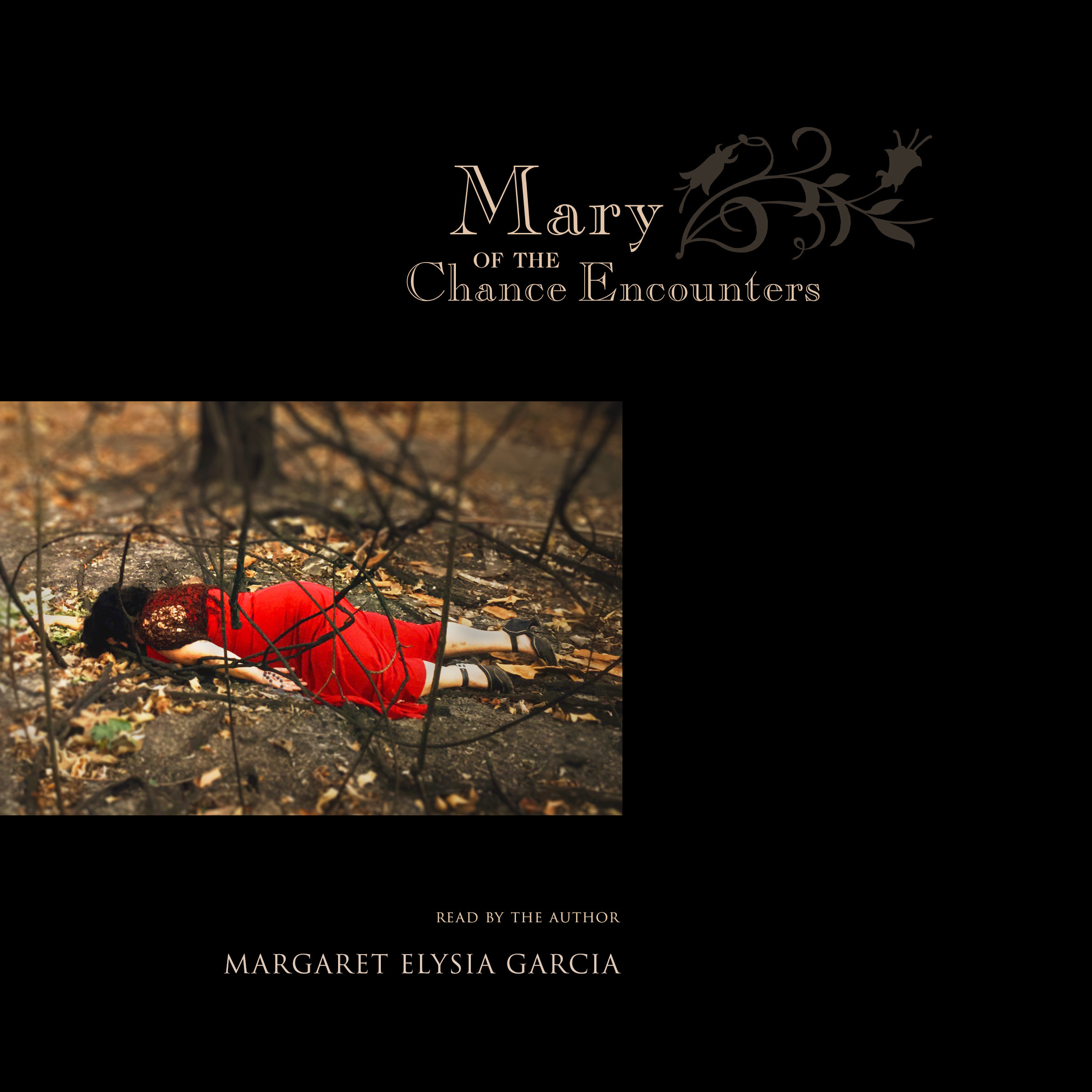 Printable Mary of the Chance Encounters Audiobook Cover Art