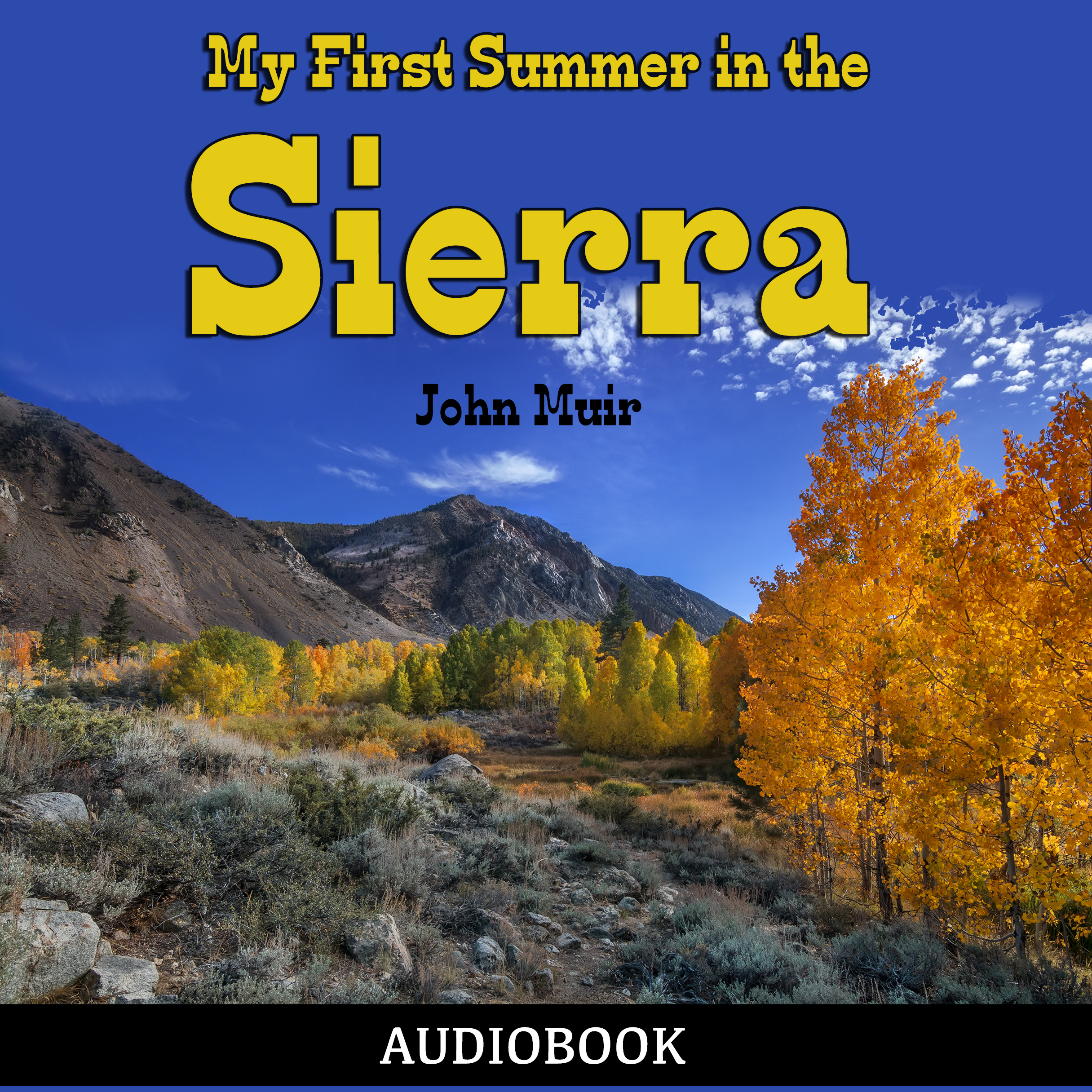 Printable My First Summer in the Sierra Audiobook Cover Art