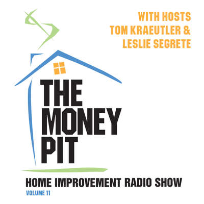 The Money Pit, Vol. 11 Audiobook, by Tom Kraeutler