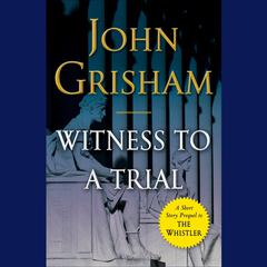 Witness to a Trial: A Short Story Prequel to The Whistler Audiobook, by John Grisham