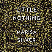 Little Nothing Audiobook, by Marisa Silver