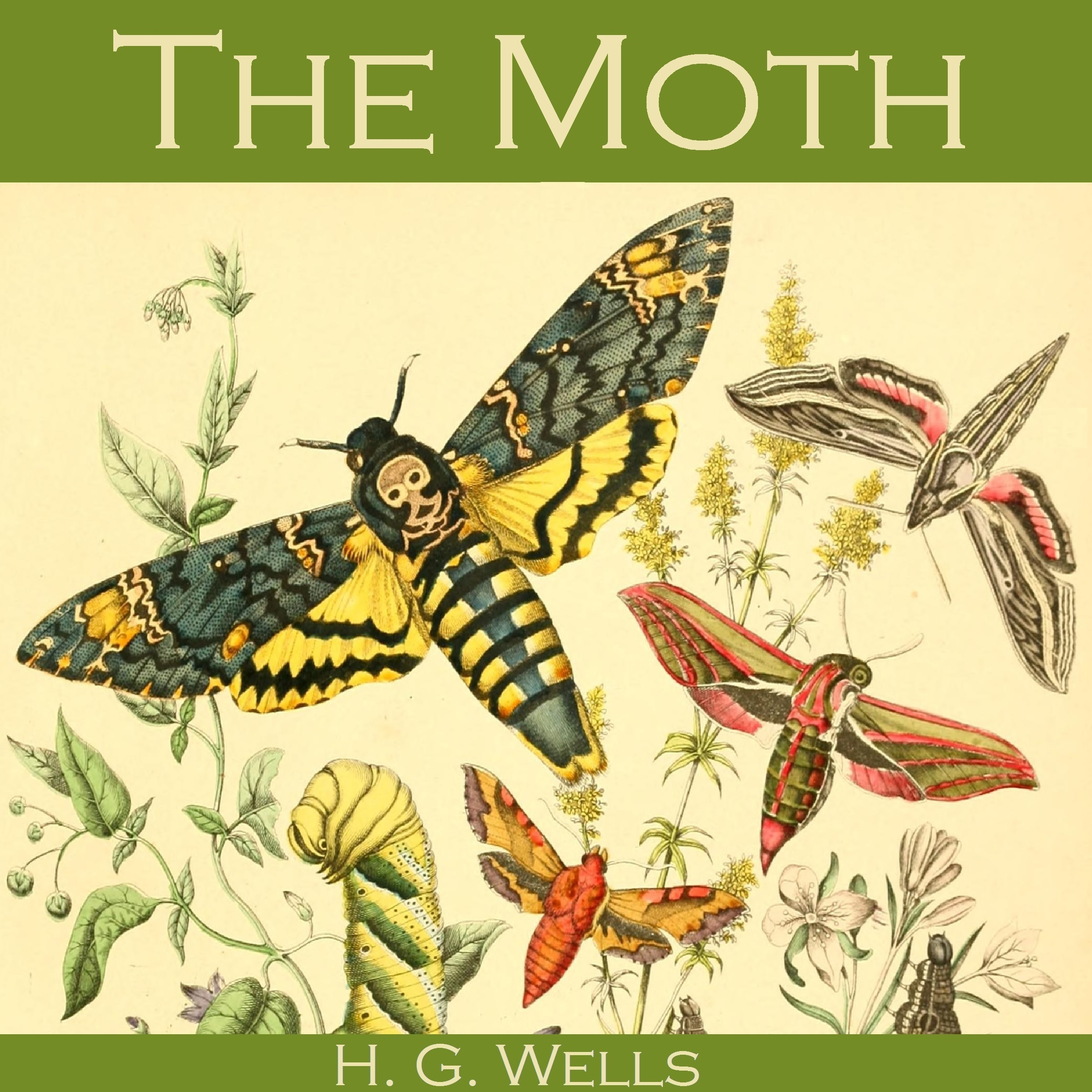 Printable The Moth Audiobook Cover Art