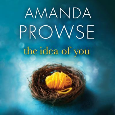 The Idea of You Audiobook, by Amanda Prowse