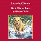 Tuck Triumphant Audiobook, by Theodore Taylor