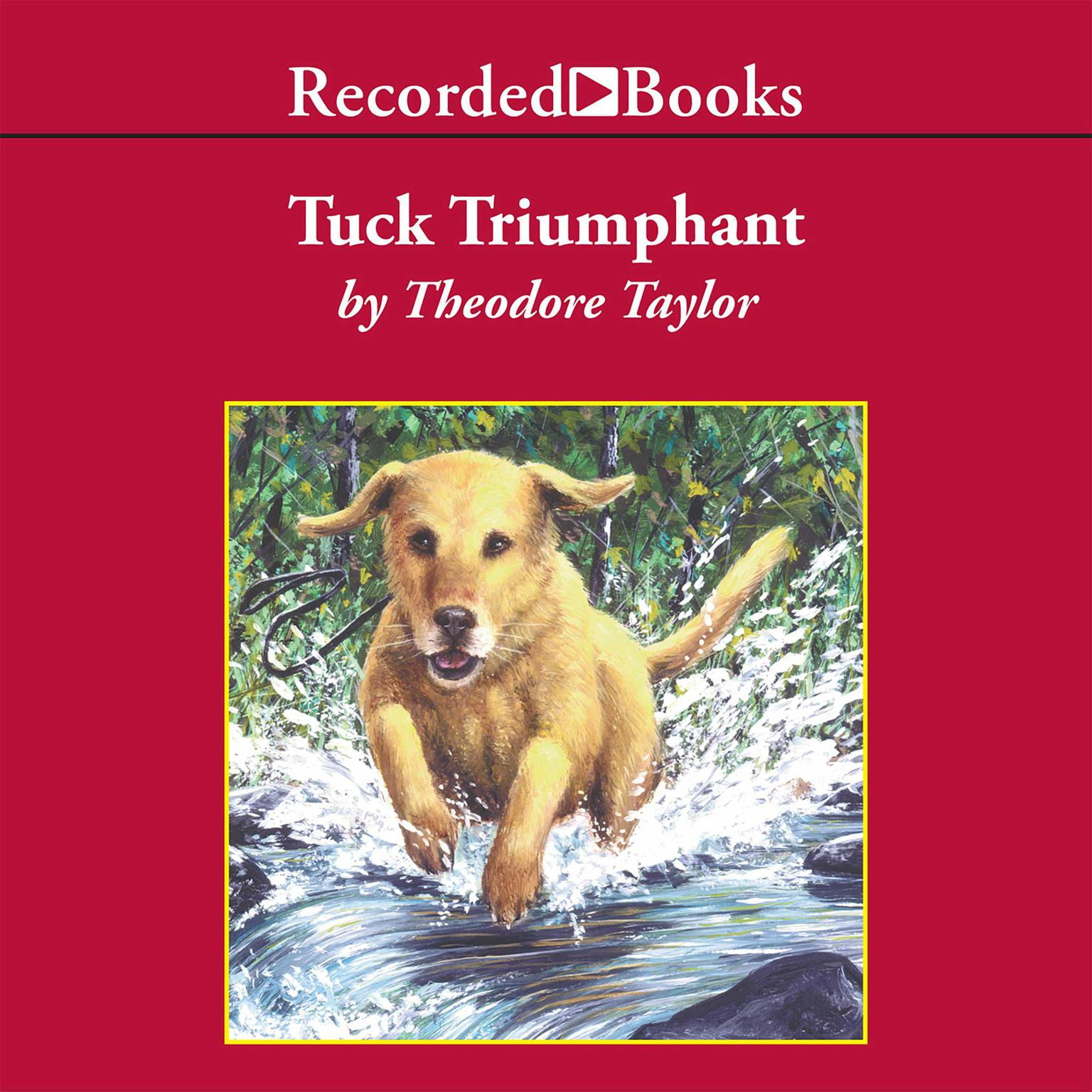 Printable Tuck Triumphant Audiobook Cover Art