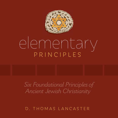 Elementary Principles Audiobook, by D. Thomas Lancaster