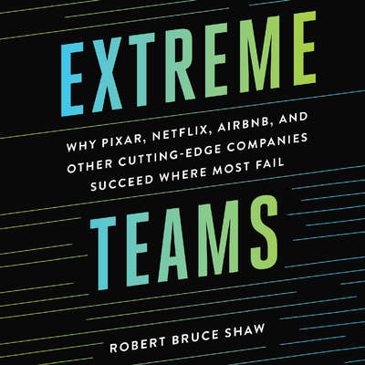 Extreme Teams: Why Pixar, Netflix, AirBnB, and Other Cutting-Edge Companies Succeed Where Most Fail Audiobook, by Robert Bruce Shaw