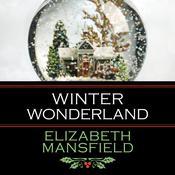 Winter Wonderland Audiobook, by Elizabeth Mansfield