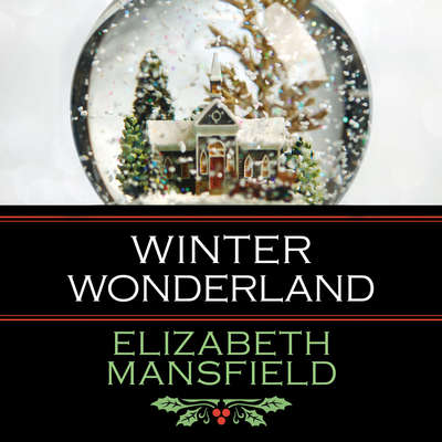 Winter Wonderland Audiobook, by Elizabeth Mansfield