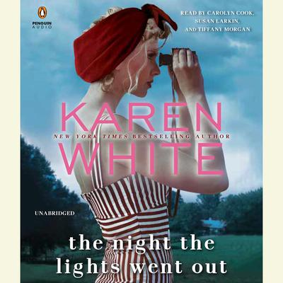 The Night the Lights Went Out Audiobook, by Karen White