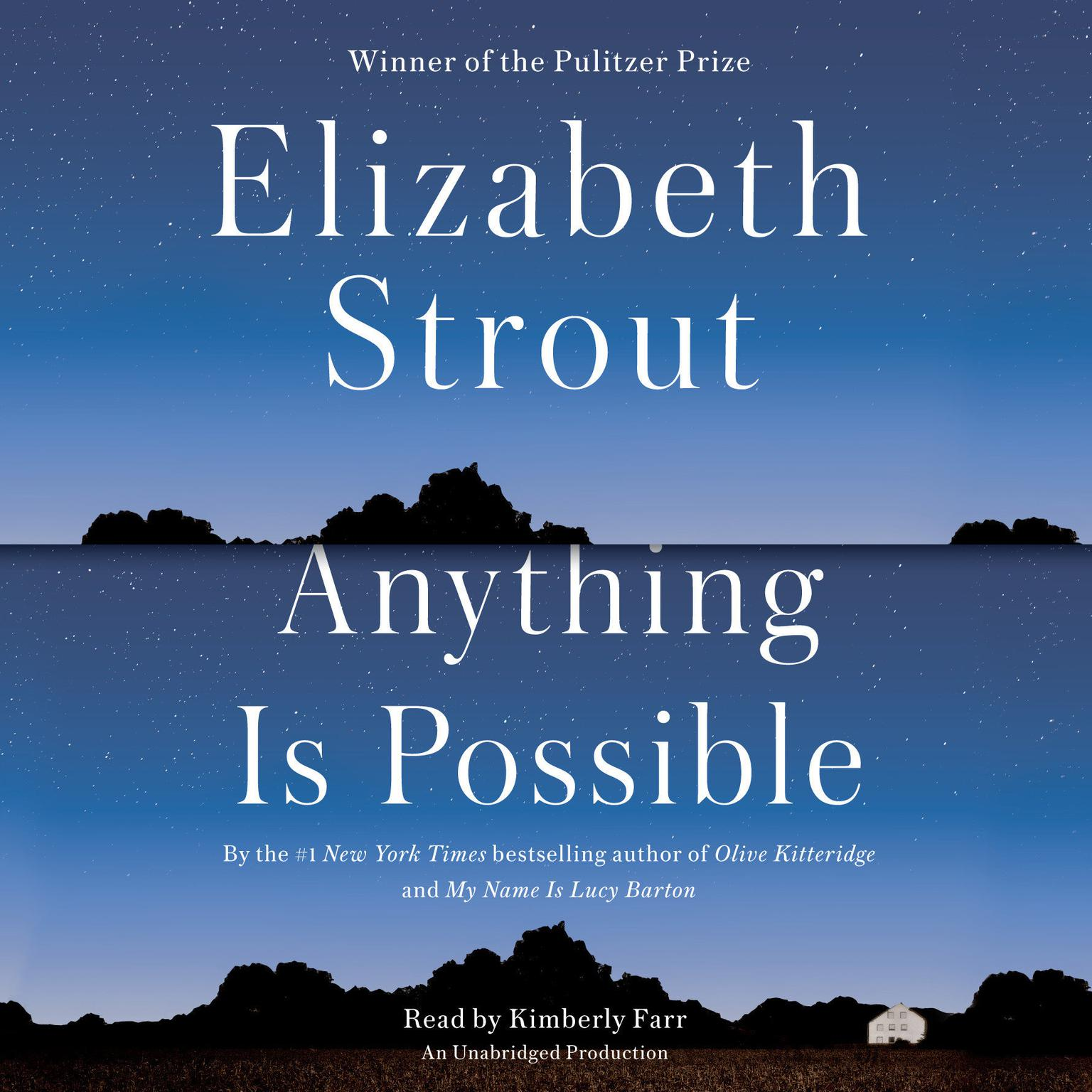 Printable Anything Is Possible: A Novel Audiobook Cover Art