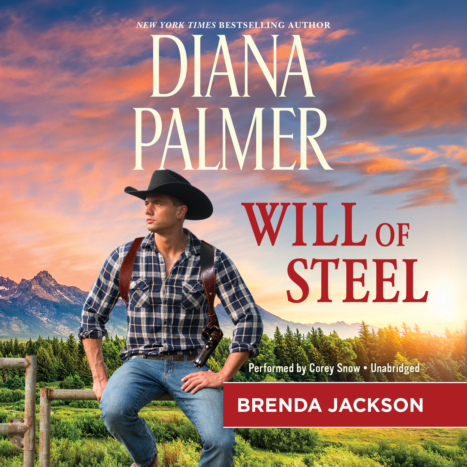 Printable Will of Steel Audiobook Cover Art