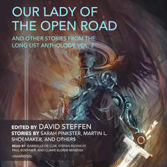 Our Lady of the Open Road, and Other Stories from the Long List Anthology, Vol. 2 Audiobook, by Sarah Pinkster, Martin L. Shoemaker, David Steffen