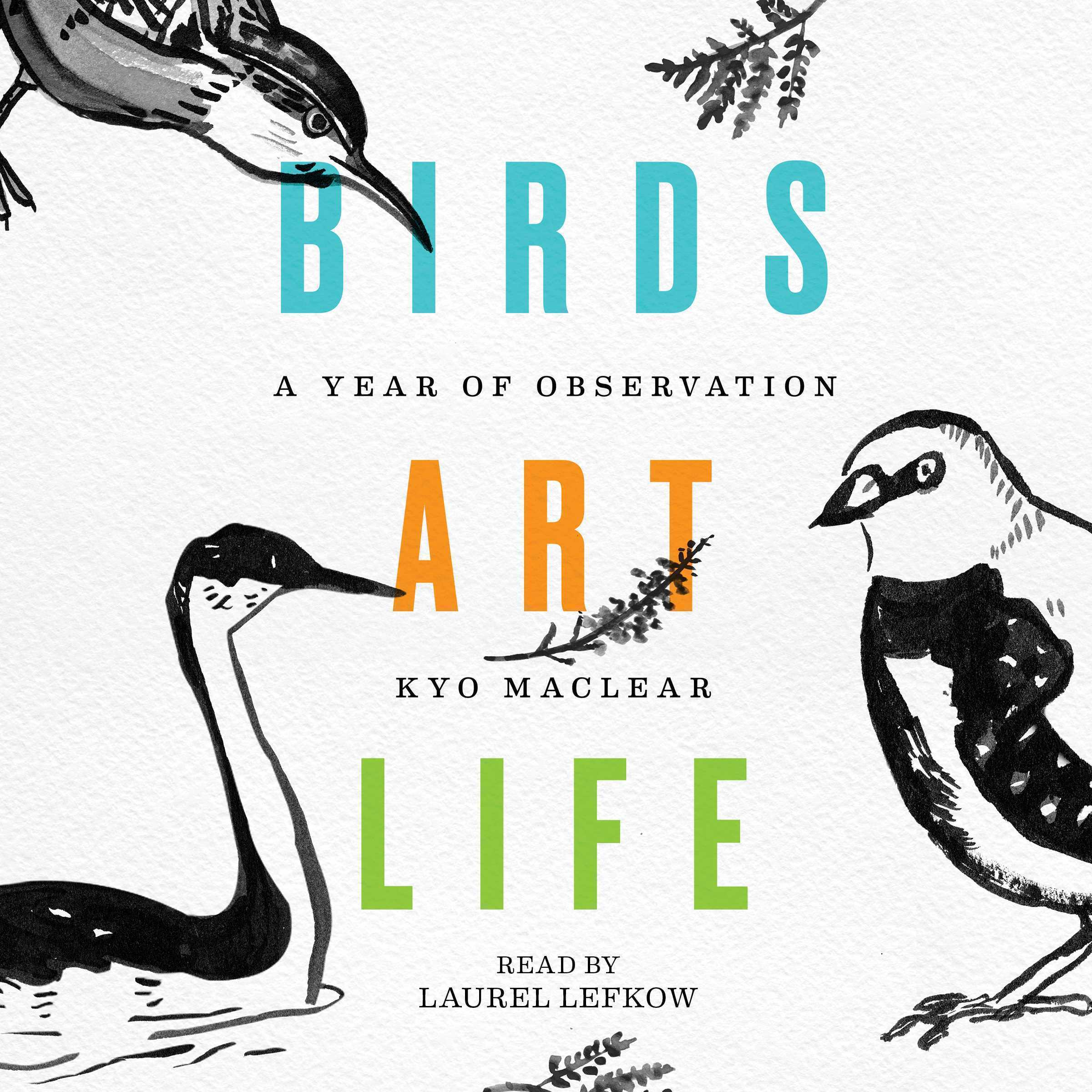 Printable Birds Art Life: A Year of Observation Audiobook Cover Art