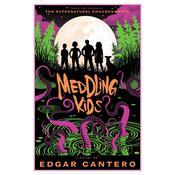 Meddling Kids: A Novel Audiobook, by Edgar Cantero