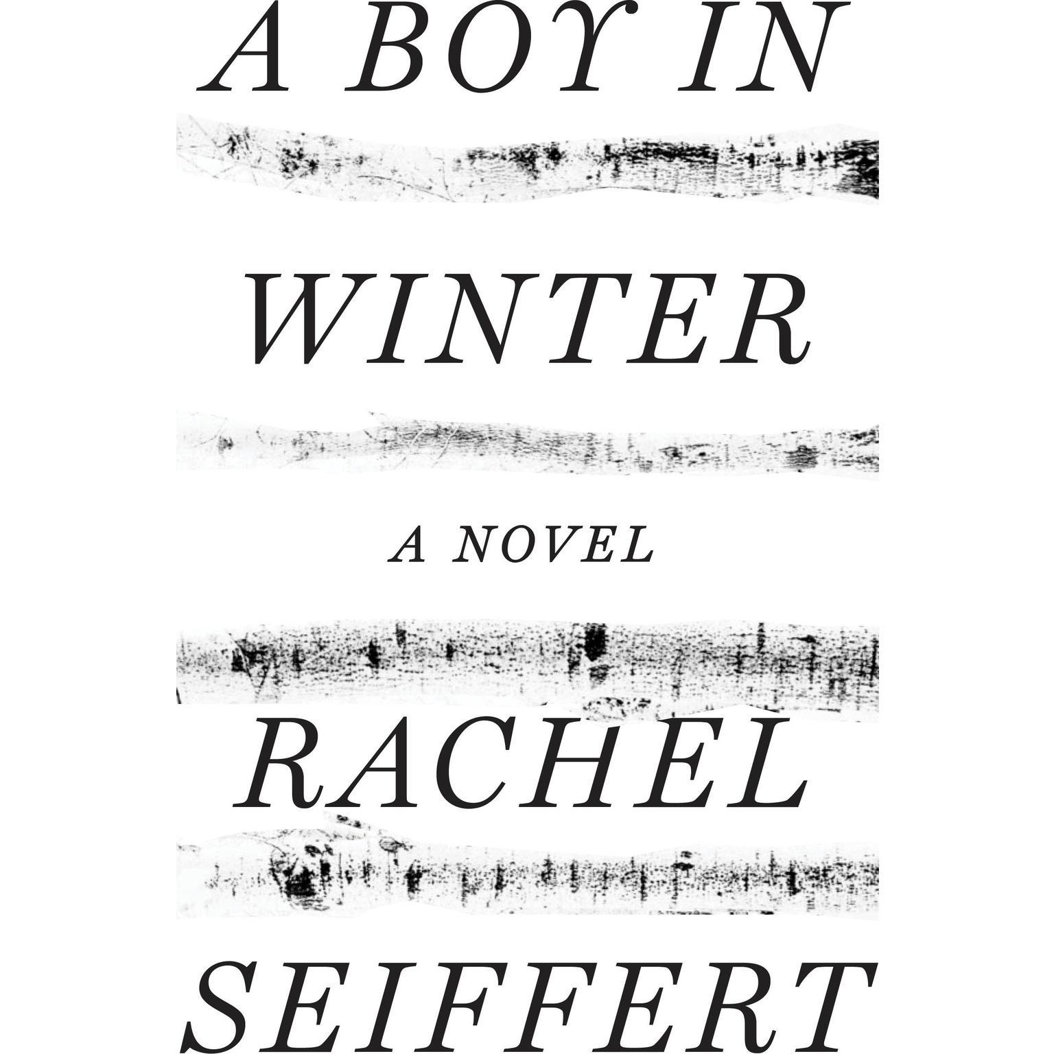 Printable A Boy in Winter: A Novel Audiobook Cover Art