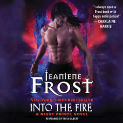 Into the Fire Audiobook, by