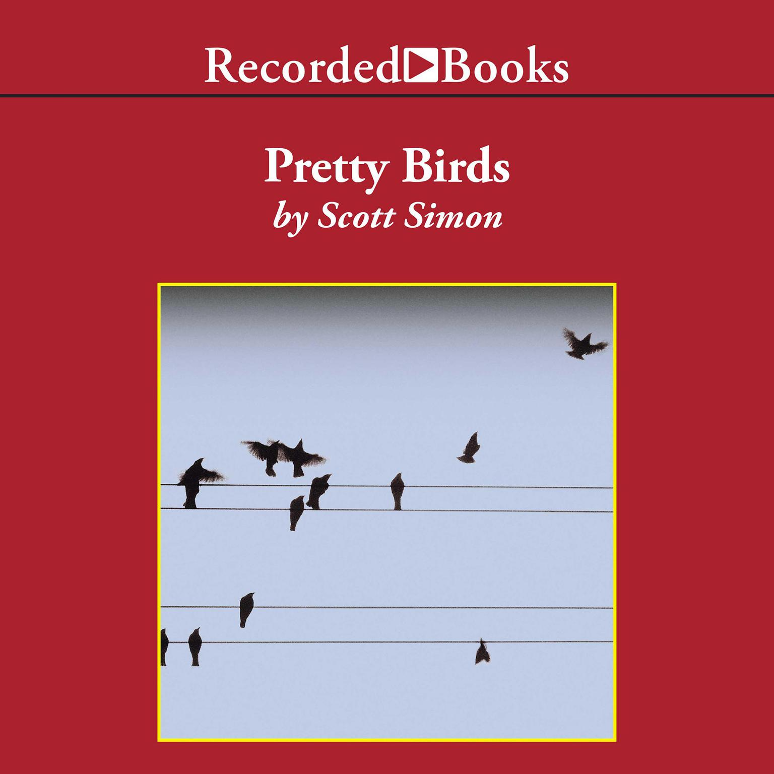 Printable Pretty Birds: A Novel Audiobook Cover Art