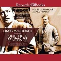 One True Sentence Audiobook, by Craig McDonald