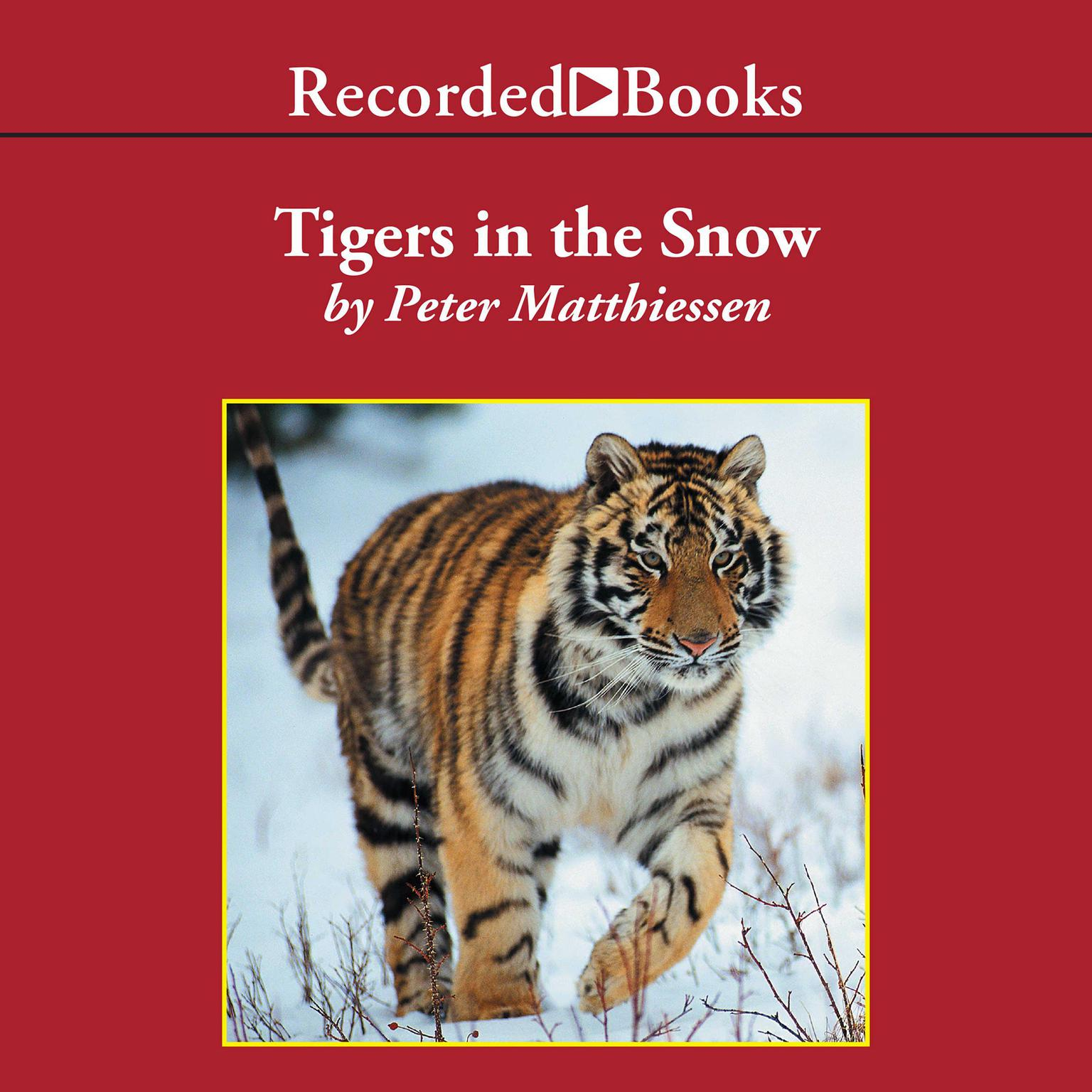 Printable Tigers in the Snow Audiobook Cover Art