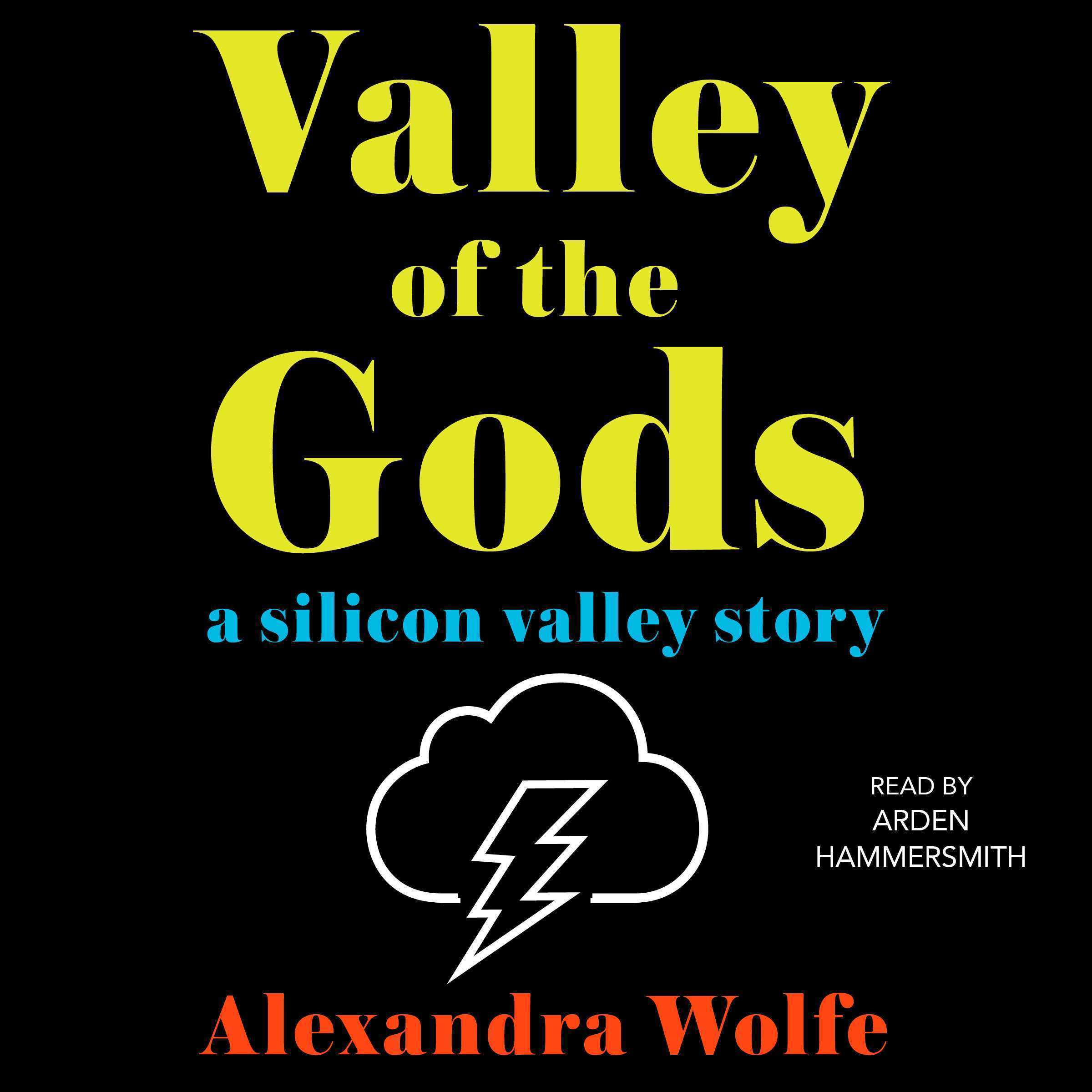 Printable The Valley of the Gods: A Silicon Valley Story Audiobook Cover Art