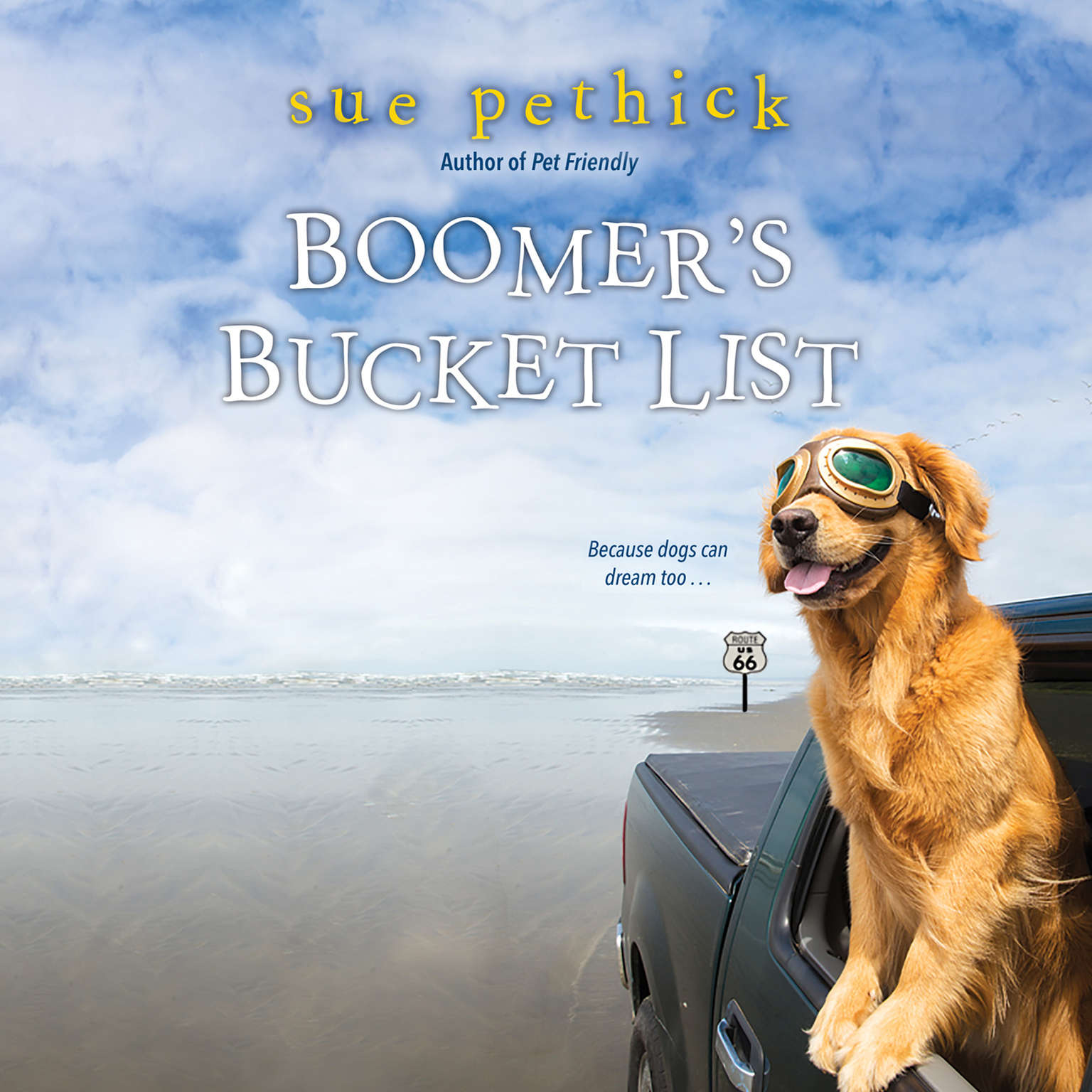 Boomers Bucket List Audiobook, by Sue Pethick