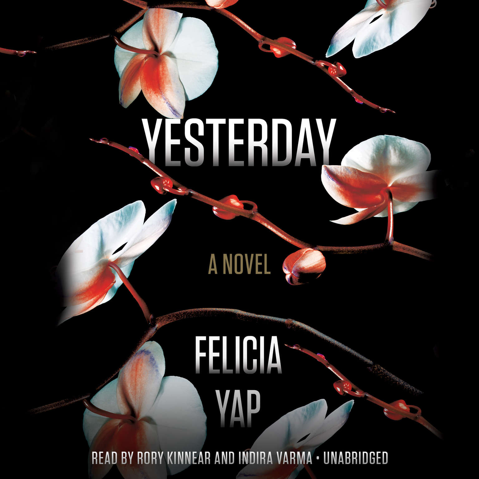 Yesterday Audiobook, by Felicia Yap