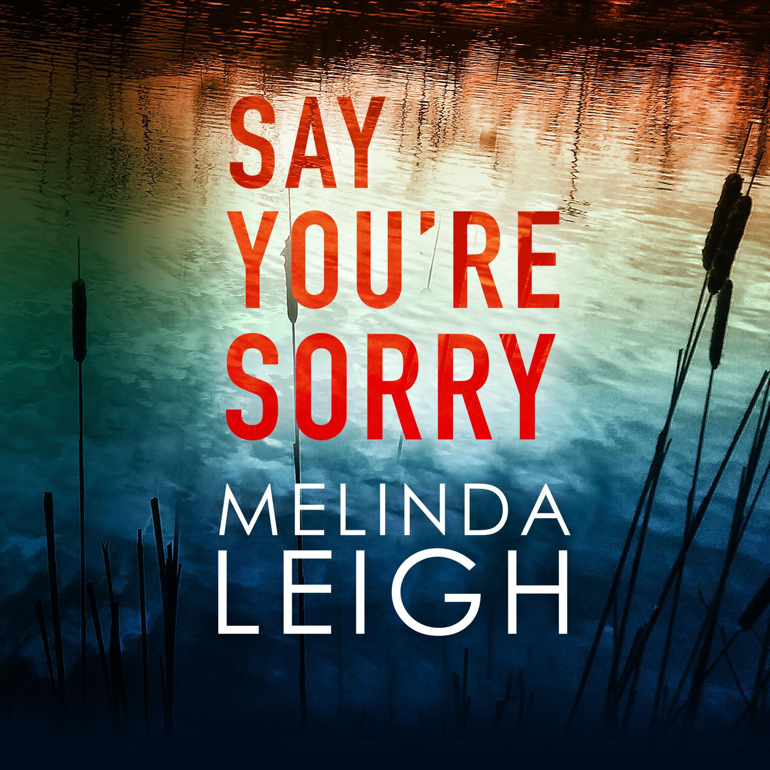 Printable Say You're Sorry Audiobook Cover Art