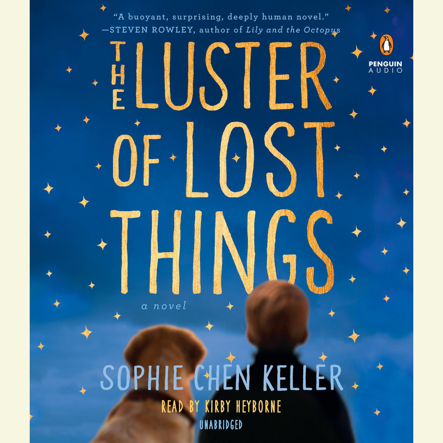 Printable The Luster of Lost Things Audiobook Cover Art