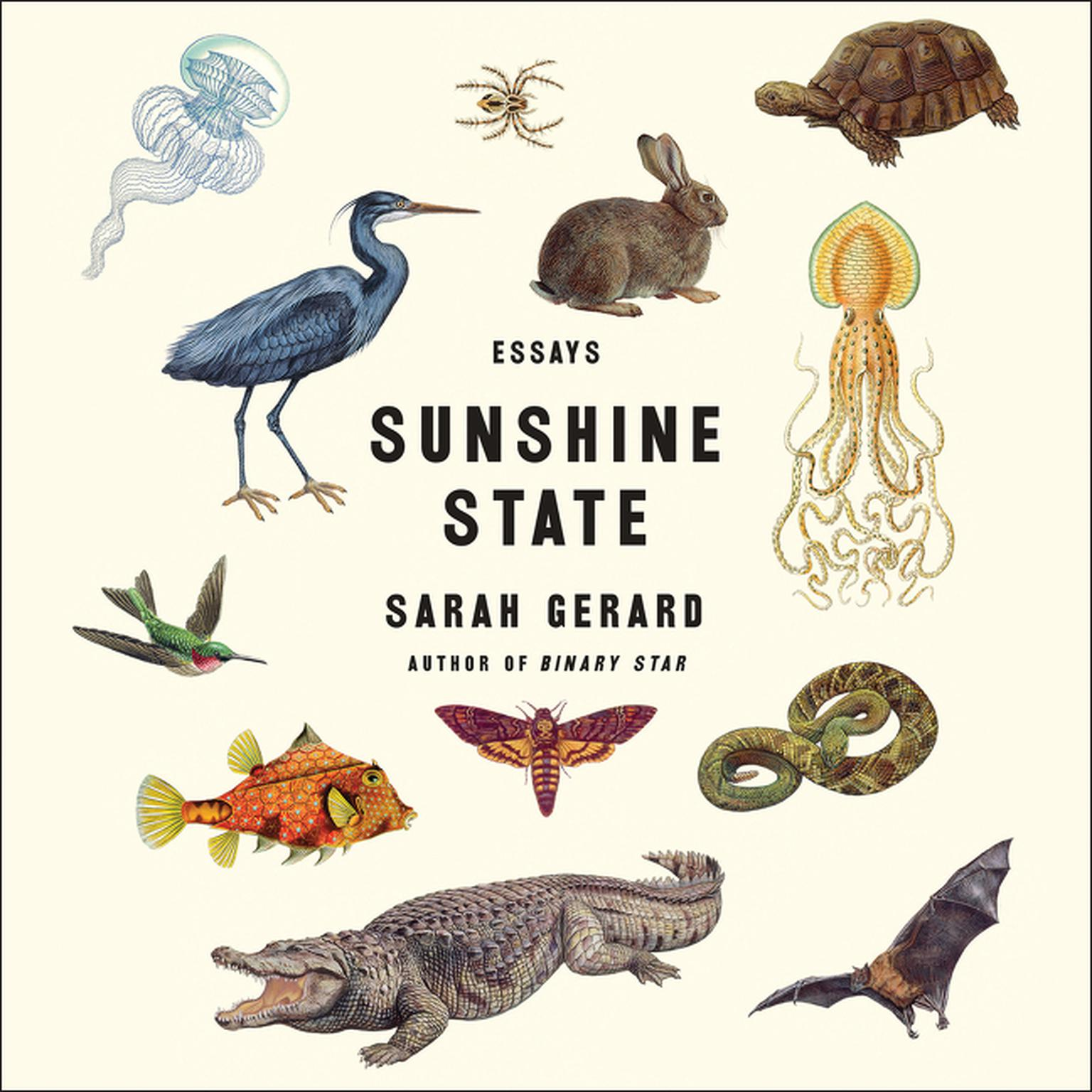 Printable Sunshine State: Essays Audiobook Cover Art