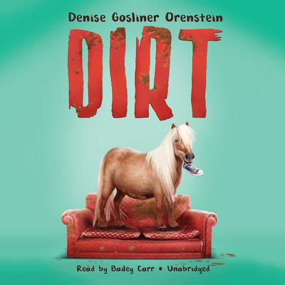 Dirt Audiobook, by Denise Orenstein