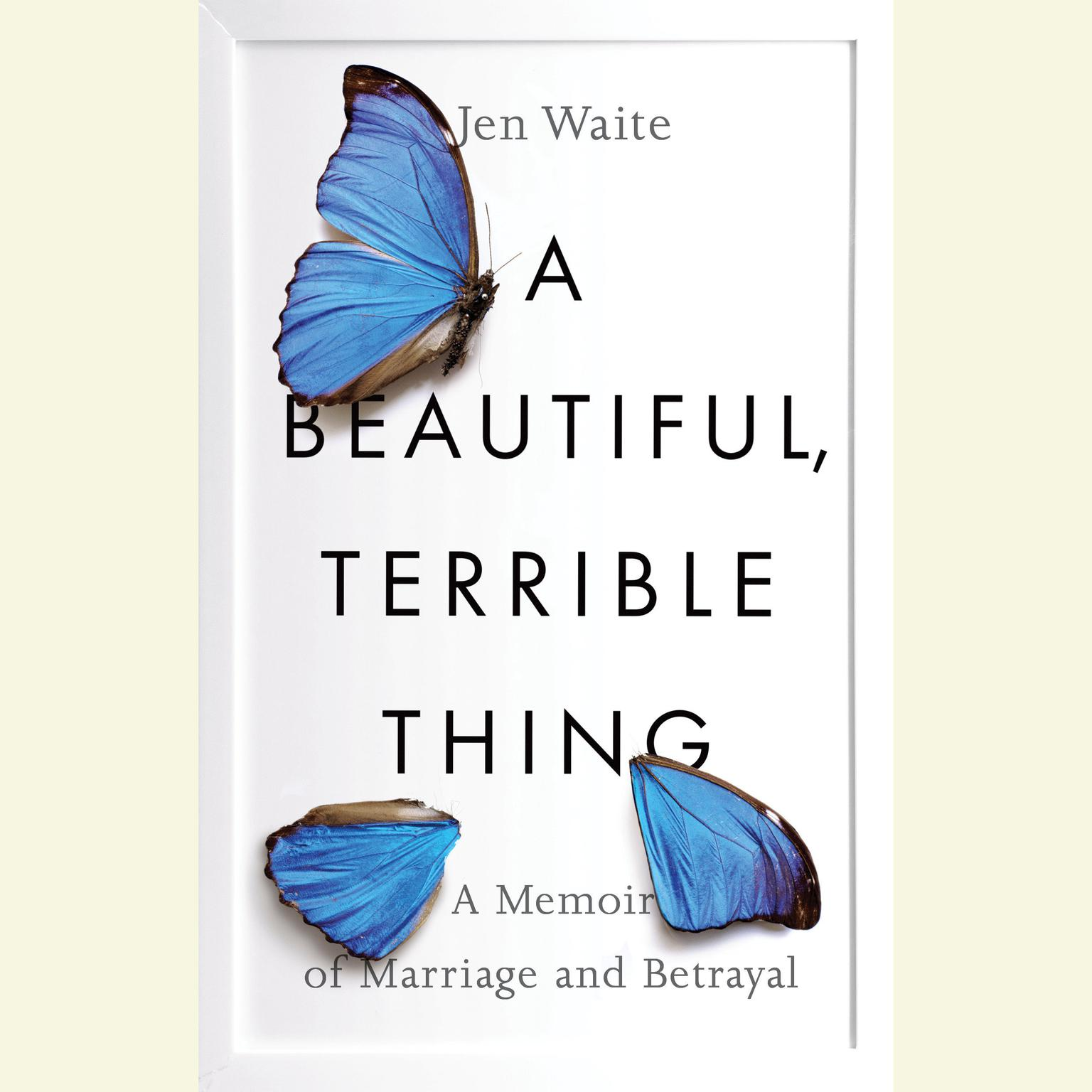 Printable A Beautiful, Terrible Thing: A Memoir of Marriage and Betrayal Audiobook Cover Art