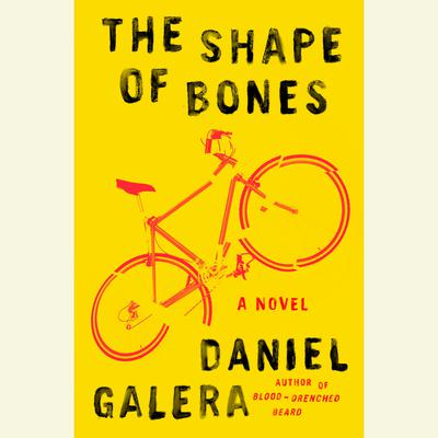 The Shape of Bones: A Novel Audiobook, by Daniel Galera