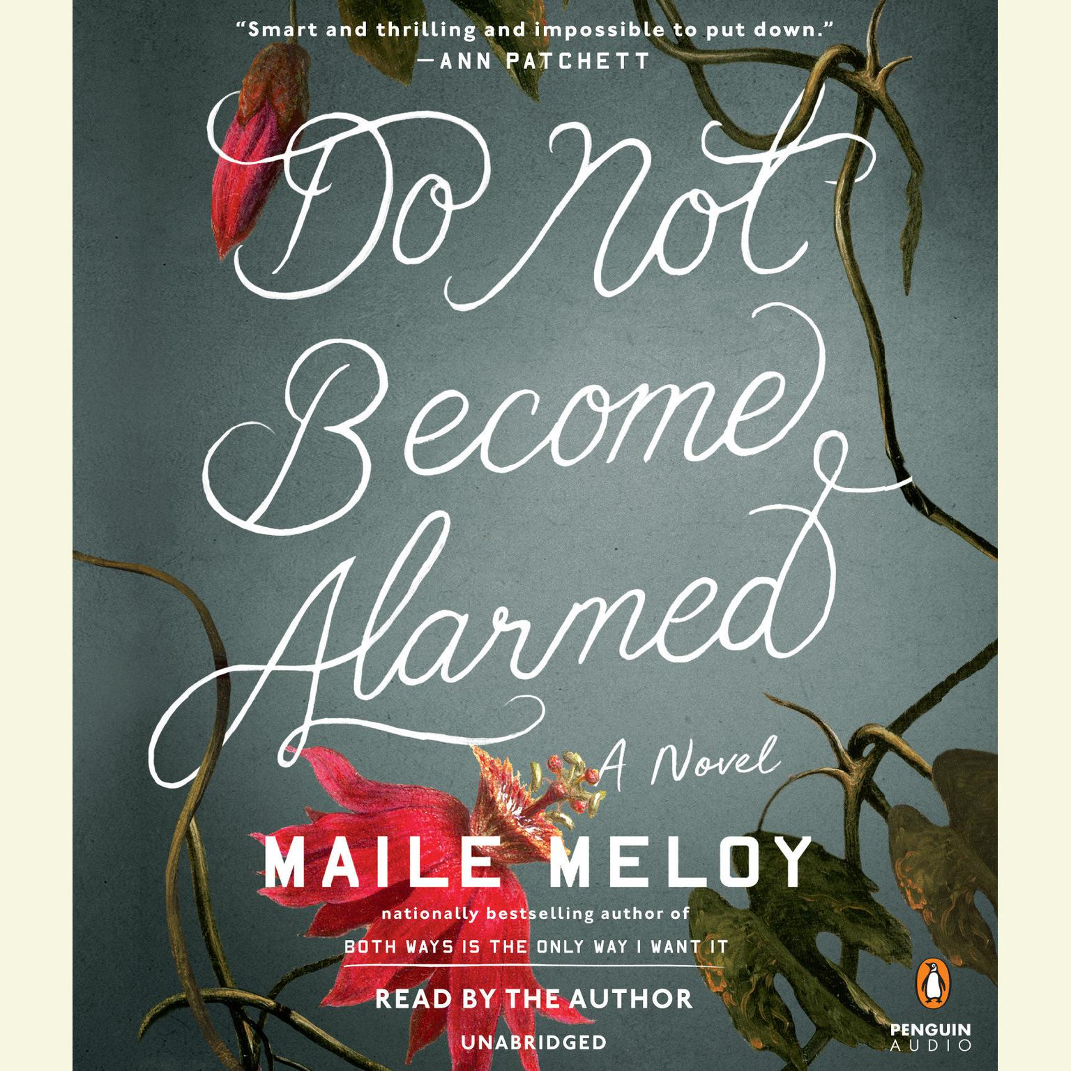 Printable Do Not Become Alarmed: A Novel Audiobook Cover Art