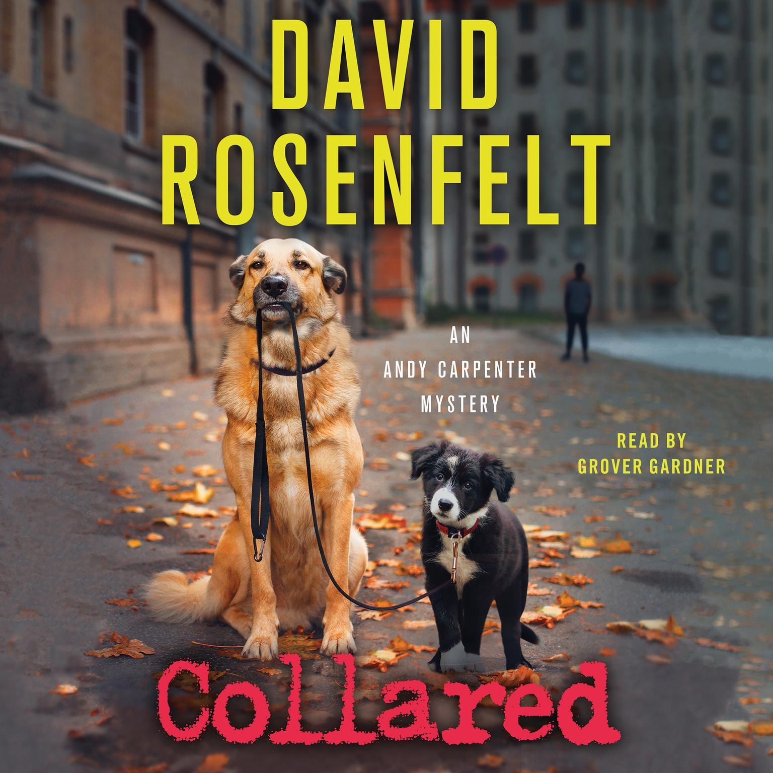 Printable Collared: An Andy Carpenter Mystery Audiobook Cover Art
