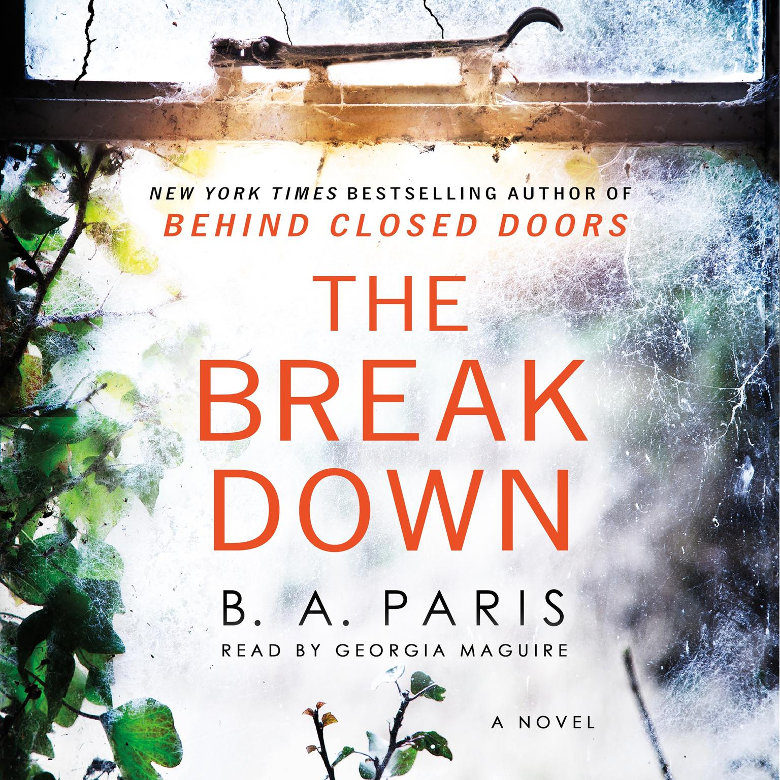 Printable The Breakdown: A Novel Audiobook Cover Art