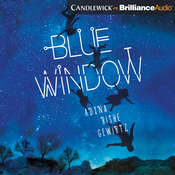 Blue Window Audiobook, by Adina Gewirtz