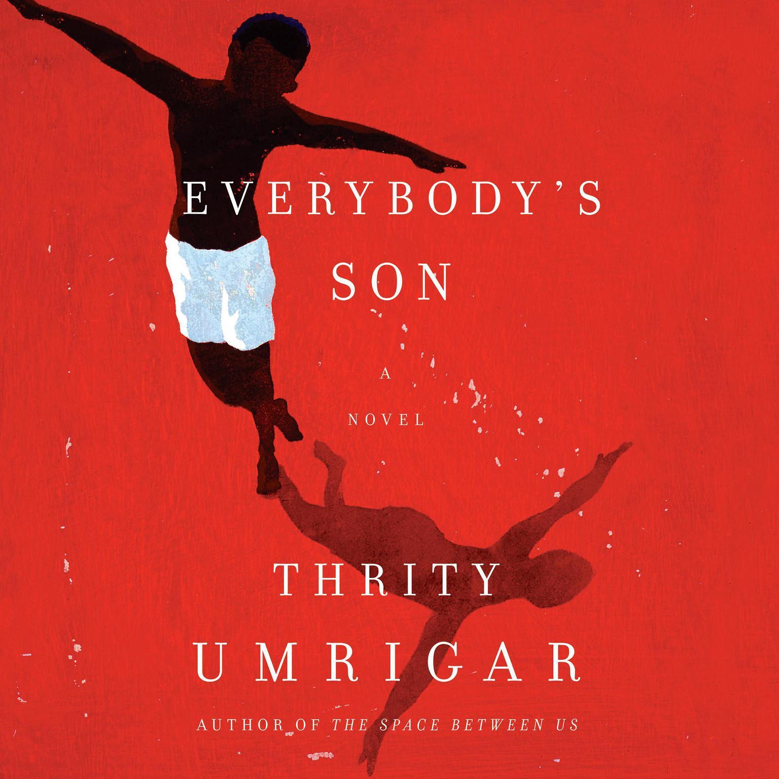 Printable Everybody's Son: A Novel Audiobook Cover Art